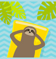 sloth floating on yellow air pool water mattress vector image