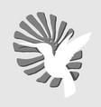 white colibri silhouette vector image