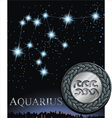 Aquarius zodiac sign Water bringer zodiac vector image