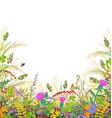 colorful frame with autumn meadow plants and vector image vector image