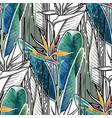 combined strelitzia pattern vector image vector image