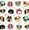 cute dogs set vector image vector image