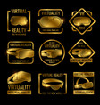 golden virtual reality glasses and helmets label vector image