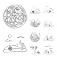 isolated object wilderness and texas logo set vector image vector image