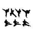 Karate set vector image vector image