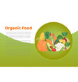 organic food vegetables and eco vegetarian food vector image