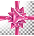 realistic bow decoration for birthday gift vector image