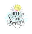 say hello to summer - hand lettering text vector image