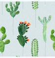 balloons in form cactus vector image