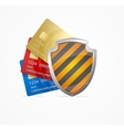 Credit Card Safety Concept vector image vector image