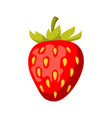 icon red strawberry vector image
