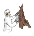 male butcher using chainsaw to cut hanging meat vector image