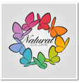 Multicolored butterflies vector | Price: 1 Credit (USD $1)