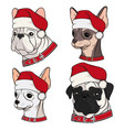 with cute dogs in christmas hats vector image vector image