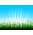 green grass over blue sky with sunbeams vector image
