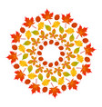 colored round autumn mandala with leaves vector image vector image
