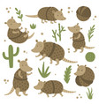 cute armadillo set and cactus on white background vector image