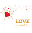 greeting card of valentine day with dandelion vector image