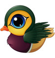 mandarin duck cartoon vector image vector image