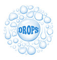 round wet water drops vector image