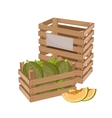 Wooden box full of melon isolated vector image vector image