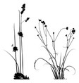 black and white plants silhouettes collection vector image