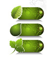 card design with stylized leaf vector image vector image