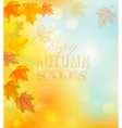Enjoy Autumn Sales Banner with Colorful Leaves vector image vector image