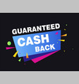 guaranteed cash back economy and shopping money vector image vector image