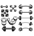 set weightlifting barbells and dumbells vector image vector image