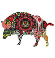 wild boar with patterns vector image