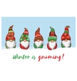 Winter is Gnoming Card with Christmas gnomes in vector image