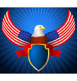 american eagle flag wing shield ribbon vector image