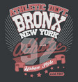 bronx t-shirt graphics new york athletic apparel vector image vector image