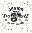 College baseball junior team emblem vector image vector image