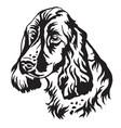 decorative portrait dog russian spaniel vector image vector image