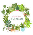 home plants in circle wreath sale poster vector image vector image