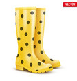 Pair of yellow rain boots vector image vector image