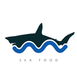 shark sea food vector image