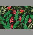 bird o paradise flowers and tropical leaves vector image vector image
