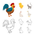 breeding and kitchen sign vector image vector image