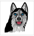 Dog husky head animal vector image vector image
