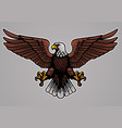 bald eagle spread his wings vector image vector image