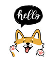greeting card with cute dog vector image