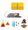 home pest insect control expert vermin vector image