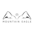 mountain eagle design template vector image vector image