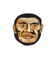Neanderthal Man Head Etching vector image