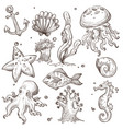 underwater fish and creatures isolated sketches vector image