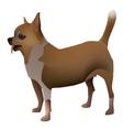 Chihuahua 2014 11 27 04225 vector image vector image