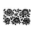 roses peonies chrysanthemums set vector image